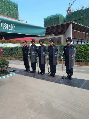 香港亚博官网app案例——保利和府(1)